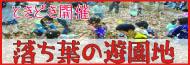 KEYAKI2008-02.jpg